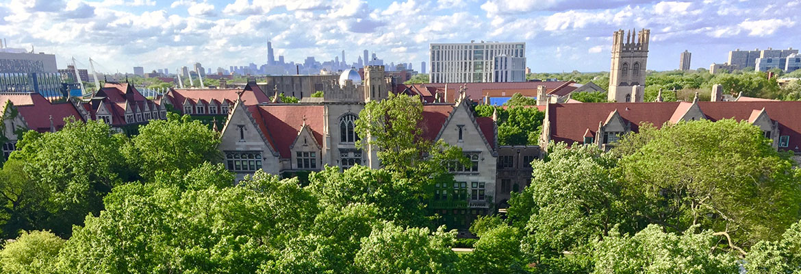 UChicago's gothic rooftops against a backdrop of the Chicago skyline